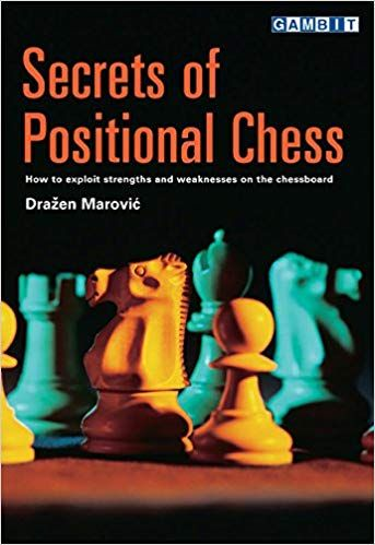 Marovic: Secrets of Positional Chess
